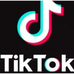 Quer aprender como mexe no TikTok? É muito fácil e o Purebreak mostra pra vocês!