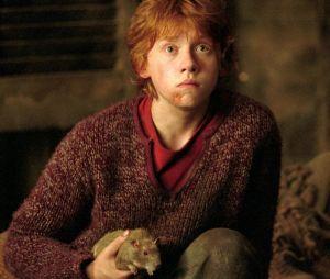 """Harry Potter"": relembre frases marcantes de Ron Weasley"