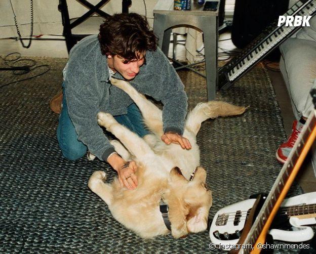 Shawn Mendes e Camila Cabello têm um cachorro chamado Tarzan