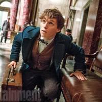 """Spin-off de """"Harry Potter"""": Newt Scamander, Porpentina e mais personagens nas novas fotos divulgadas"""