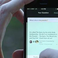 """App de perguntas e respostas """"Jelly"""" faz buscas que nem o Google consegue fazer"""