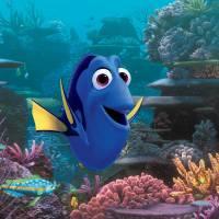 """De """"Procurando Dory"""" a """"Frozen 2"""": veja as maiores apostas da Disney para as telonas!"""