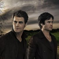 "Em ""The Vampire Diaries: na 8ª temporada, Damon e Stefan enfrentam vilã imortal! Conheçam Sybil"
