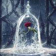 """""""A Bela e a Fera"""", com Emma Watson, acaba de ganhar um pôster incrível"""