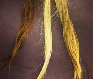 O cabeleireiro Marcos Proença pediu a ajuda de seus seguidores para escolher o tom de cabelo do novo look de Deborah Secco