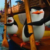 """Saem as primeiras imagens de """"Os Pinguins de Madagascar"""". Vem ver!"""