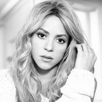 Shakira é a primeira celebridade a alcançar 100 milhões de curtidas no Facebook