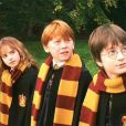"""Além da Hermione de Emma Watson, a saga """"Harry Potter"""" era repleta de outros bruxos, como Harry Potter (Daniel Radcliffe) e Rony Weasley (Rupert Grint)"""