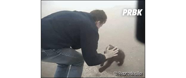 Filhotinho de urso agarrando a perna de homem