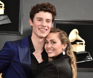 Miley Cyrus aproveitou as fotos de Shawn Mendes para a Calvin Klein e fez uma pequena crítica