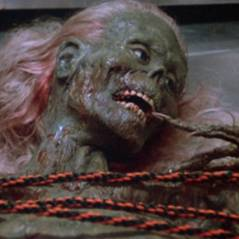 Zoeira no Halloween! Confira 10 filmes trash de terror para morrer de rir