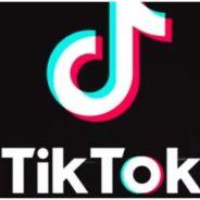 Se você ainda não entrou no TikTok, vai mudar de ideia depois de ver esses vídeos incríveis