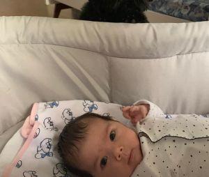 Clara Maria já é sensação no Instagram dos pais, Rafael Vitti e Tatá Werneck