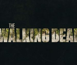 "AMC anuncia fim ""The Walking Dead"""