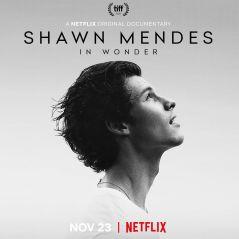 Além do documentário do Shawn Mendes, veja o que mais entra no catálogo da Netflix em novembro