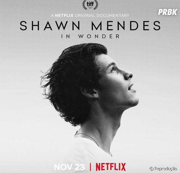 Netflix em novembro: Shawn Mendes lança seu documentário no dia 23 de novembro