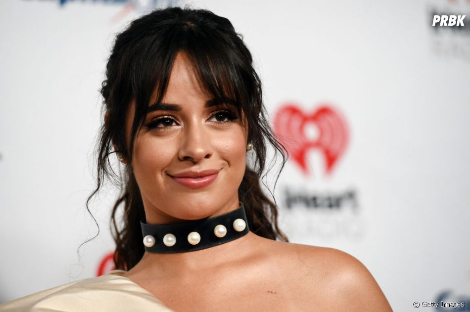 Camila Cabello já repreendeu Shawn Mendes quando o artista levantou a voz em discussão