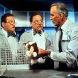 """""""Gremlins"""", sucesso dos anos 80, é exibido na """"Sessão da Tarde"""" nesta quinta-feira (29)"""