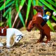 Lego (@legosobral) em aventura com o seu cavalo no Instagram