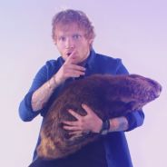 Ed Sheeran aparece em vídeo fofo para anunciar prêmio Much Music Video Awards