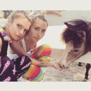 Miley Cyrus e Stella Maxwell, modelo da Victoria's Secret, podem estar namorando sério! OMG!