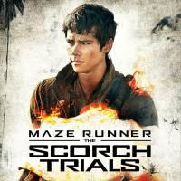 """De """"Maze Runner 2"""": Dylan O'Brien, o Thomas, aparece incrível em novo cartaz divulgado. Confira!"""