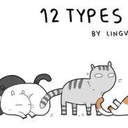 Dono de gato? Dê uma olhada nos 12 tipos que existem e veja se o seu se parece com eles!