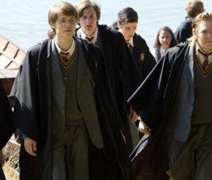 """O passado dos Marotos, Lily e Snape em Hogwarts mereciam ser trabalhados melhor num spin-off digno do sucesso de """"Harry Potter"""", né?"""