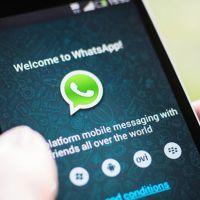 WhatsApp tem recurso secreto para mandar gifs animados na versão beta do aplicativo