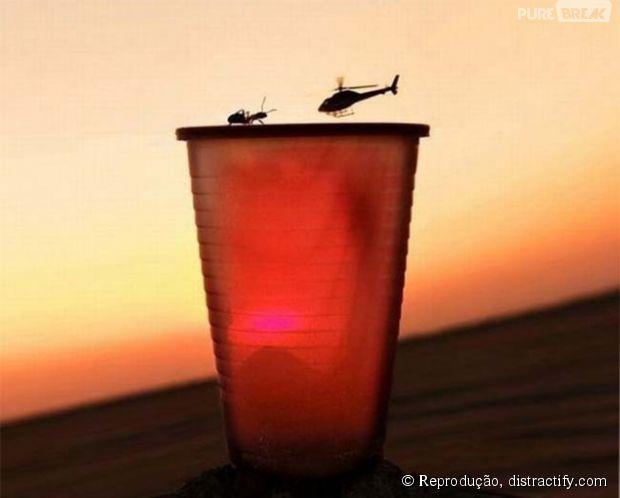 Quem ganha essa batalha: a formiga ou o helicóptero?