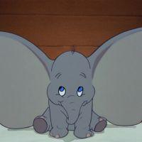 "Novo filme da Disney traz ""Dumbo"" para a vida real! Entenda"
