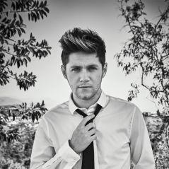 Niall Horan modelo? Cantor assina contrato com agência, de acordo com revista!
