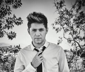 Niall Horan assina contrato com agência de modelos!