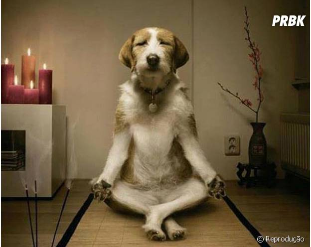 Meditar ajuda a relaxar e faz o tempo passar!
