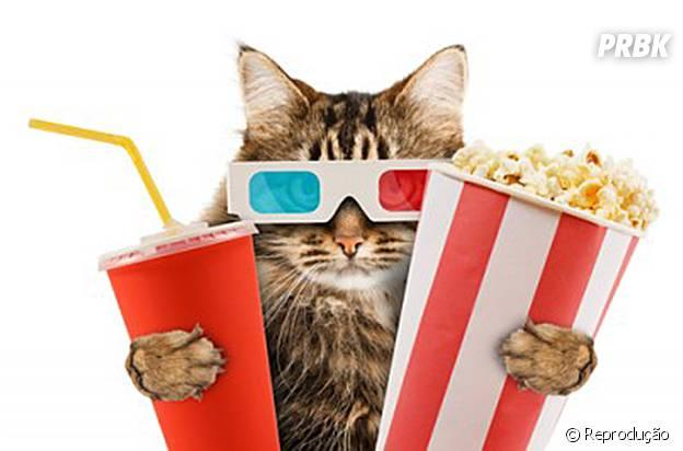 Convide os amigos para ver vários filmes seguidos!