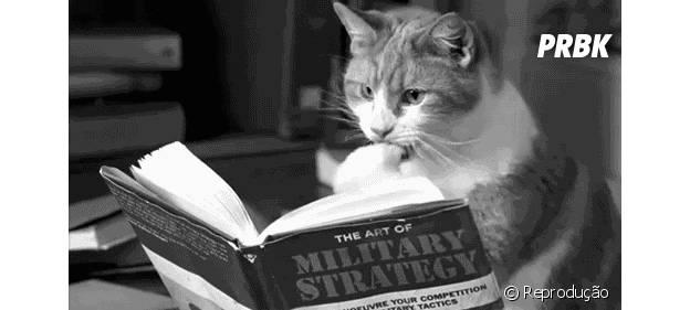 Ler um livre é sempre uma boa ideia!