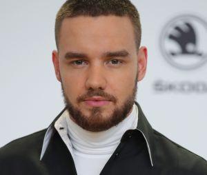 Liam Payne, do One Direction, apresentará um bloco especial do TVZ nesta sexta (15)
