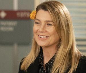 """Com """"Grey's Anatomy"""" e mais: veja séries com muitas temporadas na Netflix para maratonar no feriado"""