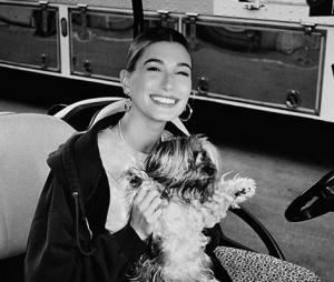 Hailey Baldwin publicou um vídeo com o pequeno Oscar, cachorro da modelo e de Justin Bieber, e recebeu críticas no Instagram