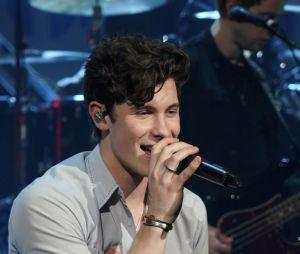 Grammy 2019: é a primeira vez que Shawn Mendes é indicado