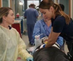 "Crossover de ""Grey's Anatomy"" e ""Station 19"" vai se tornar semanal, promete ABC"