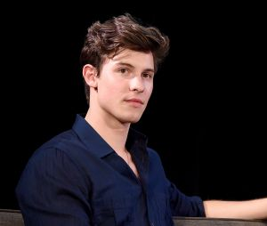 Shawn Mendes e Camila Cabello: cantor deixa claro que namoro não é jogada de publicidade
