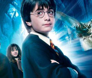 """Saga """"Harry Potter"""": tirando o """"Ordem da Fênix"""", todos os filmes estão disponíveis no serviço de streaming do Telecine"""