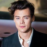 Aqui vai uma lista de personagens que gostaríamos de ver Harry Styles interpretando um dia