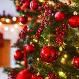 Escolha a melhor comida de Natal e te daremos um episódio natalino para assistir